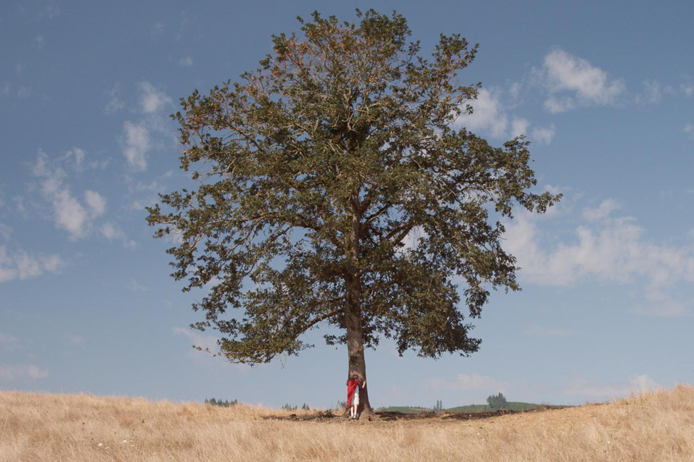 se connecter aux arbres