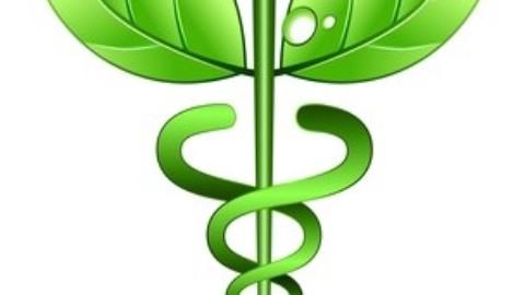 E-Santé –  A pour vocation de fournir des informations complémentaires à la consultation médicale